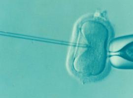 Increasing IVF Success Rates